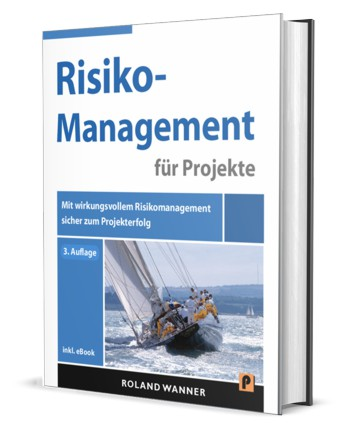 Risikomanagement Projekte Buch